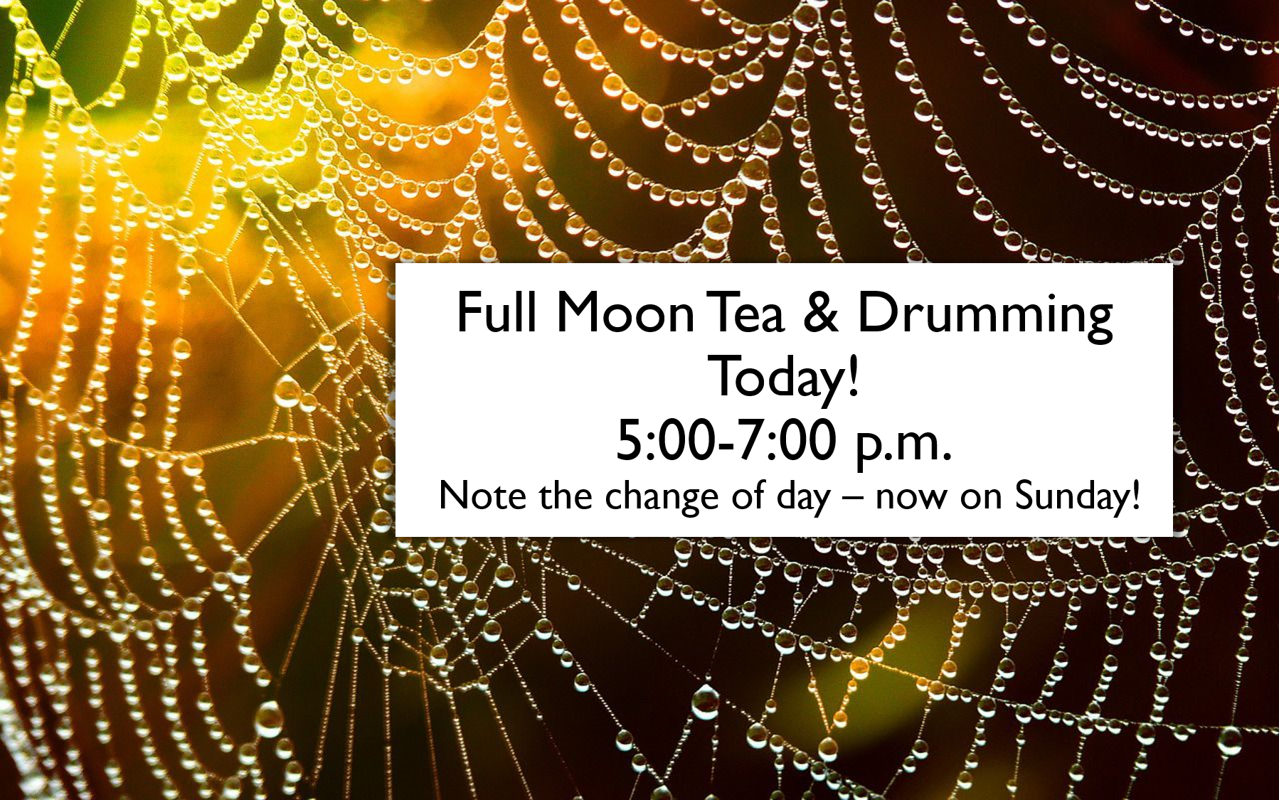 tea-and-drumming-today